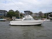 Bertram Flybridge Cruiser 26' (1991 model)
